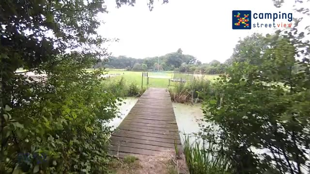 Camping De Koeksebelt Ommen Overijssel Netherlands
